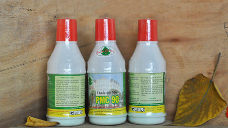 Các lưu ý khi xịt thuốc diệt mối tận gốc PMC90