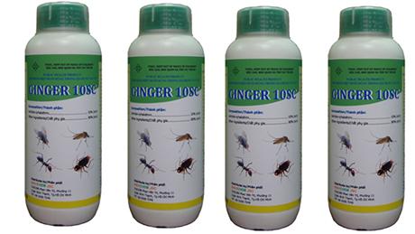 Thuốc diệt côn trùng GINGER 10 SC